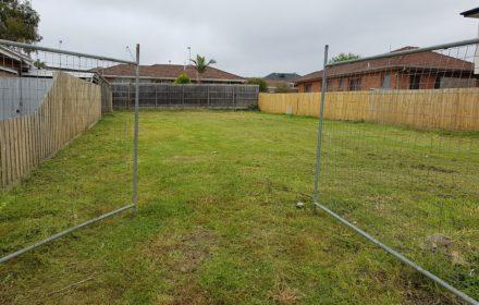Slashing Tall Grass Result - MASTERPIECE GARDENSCAPES